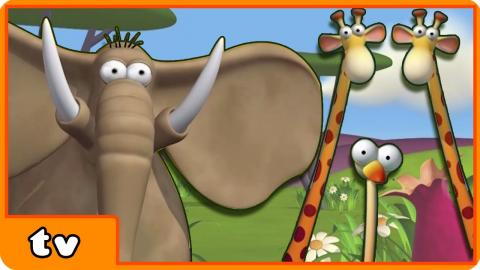 Gazoon | Roll | Funny Animals Cartoons Collection For Children by HooplaKidzTV