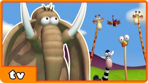 Funny Animals Cartoons Collection | Roll | For Babies by HooplakidzTv